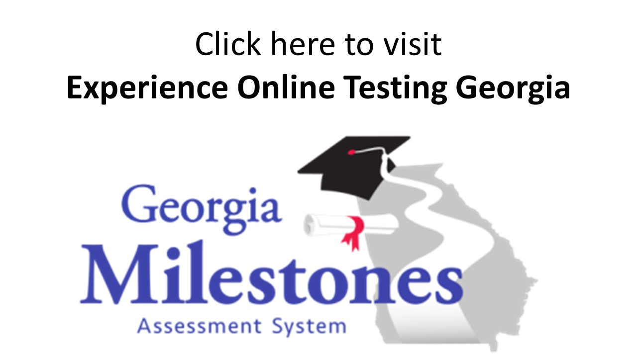 Image result for experience online testing georgia